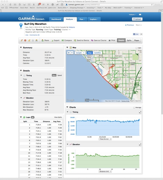garmin window copy